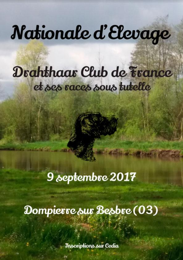 Drahthaar club de france